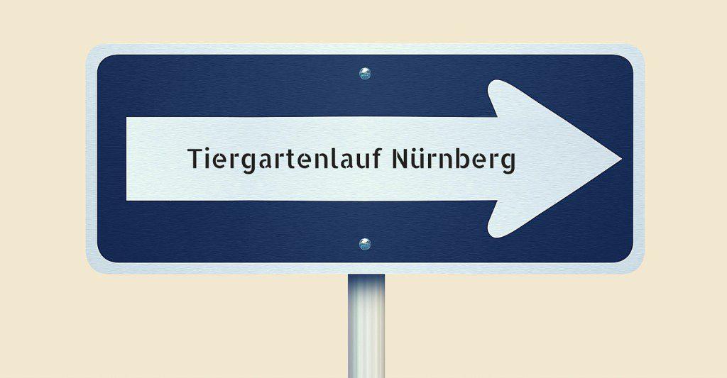 Tiergartenlauf Nürnberg, Laufen